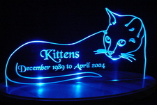 Cat Acrylic Lighted Edge Lit LED Sign / Light Up Plaque Kitten