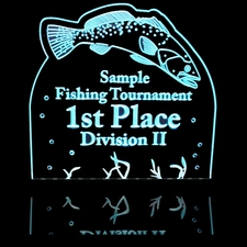 Fishing Trophy Award Tournament 1st Place Acrylic Lighted Edge Lit LED Sign / Light Up Plaque Full Size Made in USA