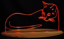 Cat Acrylic Lighted Edge Lit LED Sign / Light Up Plaque Full Size Made in USA