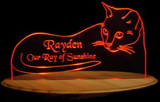 Cat Rayden SAMPLE Acrylic Lighted Edge Lid Led Sign / Light Up Plaque