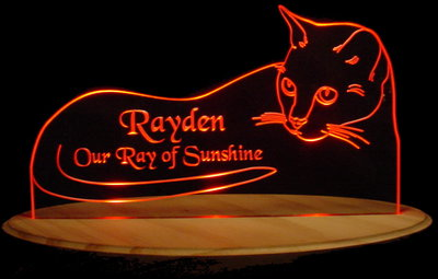 Cat Rayden Acrylic Lighted Edge Lid Led Sign / Light Up Plaque
