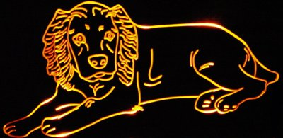 Dog Acrylic Lighted Edge Lit LED Animal Sign / Light Up Plaque