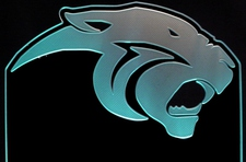 Panther Acrylic Lighted Edge Lit LED Sign / Light Up Plaque Full Size USA Original