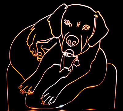 Labrador Dog Acrylic Lighted Edge Lit LED Sign / Light Up Plaque Lab