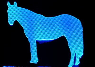 Horse Quarter Acrylic Lighted Edge Lit LED Sign / Light Up Plaque Full Size Made in USA